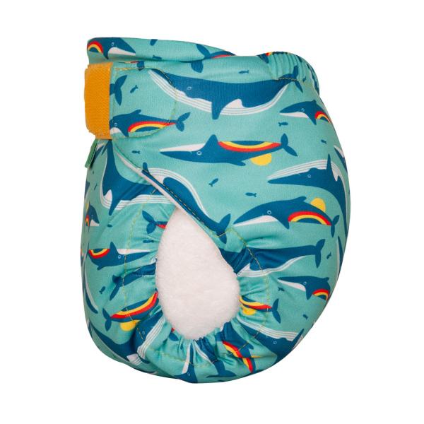 Totsbots zwemluier Rainbow Whale